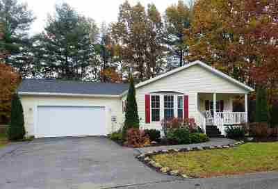 Strafford County Single Family Home For Sale: 11 Alexandra Lane
