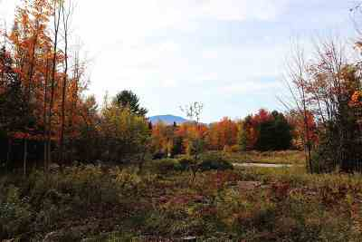 Hyde Park VT Residential Lots & Land For Sale: $58,000