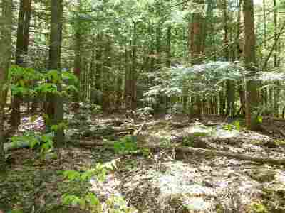 Belknap County Residential Lots & Land For Sale: Map 22 Lot 113 White Birch Road