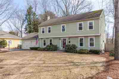 Nashua Single Family Home For Sale: 7 Edson Street