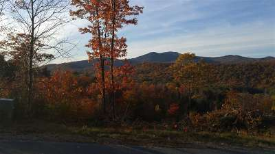 Residential Lots & Land For Sale: Lot 28 Black Bear/Shaw Run