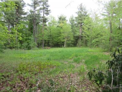 Charlotte Residential Lots & Land For Sale: 380 Dolliver Drive Drive #Lot #7