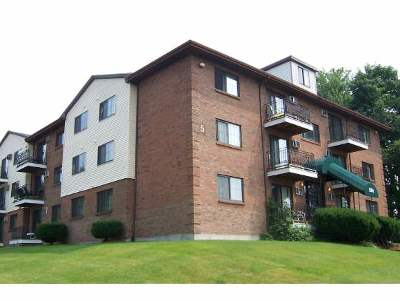 Merrimack County Rental For Rent: 134 Mammoth Road #29