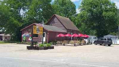 Lincoln Commercial For Sale: 437 U.s. Route 3 Highway