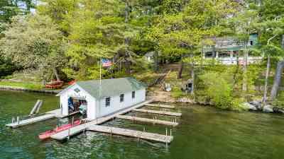 Moultonborough Single Family Home For Sale: 66 Alpine Park Road