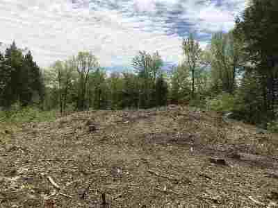 Henniker Residential Lots & Land For Sale: Lots 4 & 5 Ray Road
