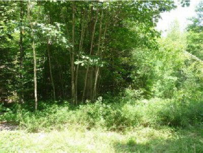 Newbury Residential Lots & Land For Sale: 156 Chalk Pond Road