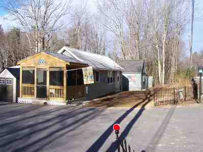 Concord Single Family Home For Sale: 12 Hoit Road