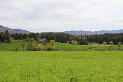 Morristown VT Residential Lots & Land For Sale: $99,900