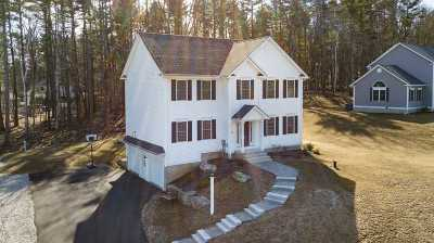 Hudson Single Family Home For Sale: 22 Rolling Woods Drive