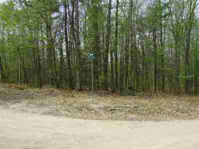 Moultonborough Residential Lots & Land For Sale: Wintersport Street #066