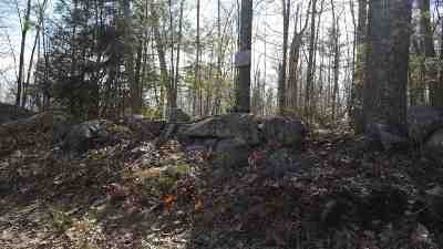 Moultonborough Residential Lots & Land For Sale: Lot 4 Olympia Street #128/04