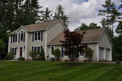 Concord Single Family Home For Sale: 319 Elm Street