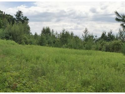Residential Lots & Land For Sale: Lot 5 Rabbit Path Road