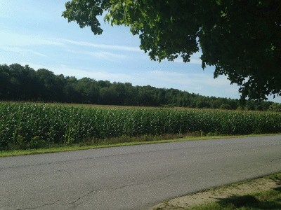 Brandon Residential Lots & Land For Sale: Country Club Road