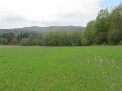 Rutland Town Residential Lots & Land For Sale: 2500 Us Route 7 North #2