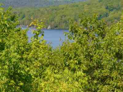 Residential Lots & Land For Sale: Harvey Mountain Road