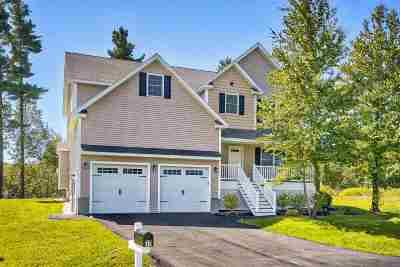 Chester Single Family Home For Sale: 17 Granite Lane