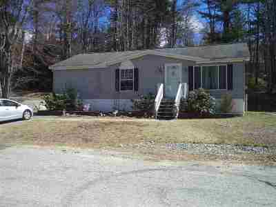 Derry Single Family Home For Sale: 211 By Pass 28 #16.5 Spring Drive