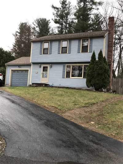 Derry Single Family Home For Sale: 28 Amherst Drive