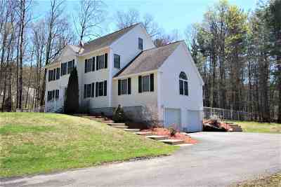 Derry Single Family Home For Sale: 159 Island Pond Road