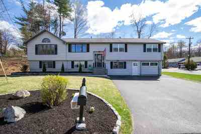 Nashua Single Family Home For Sale: 3 Michelle Drive