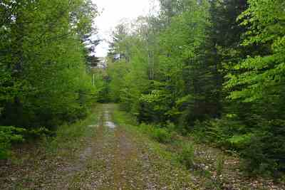 Grafton Residential Lots & Land For Sale: 181 Sargent Hill Road