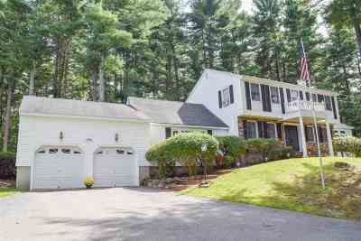 Londonderry Single Family Home For Sale: 29 Boyd Road