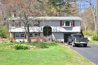 Derry Single Family Home For Sale: 14 Scenic Drive