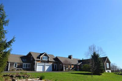 Francestown Single Family Home For Sale: 1130 Bible Hill Road
