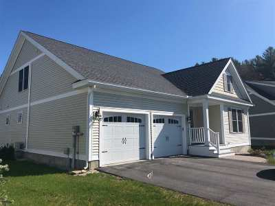 Strafford County Single Family Home For Sale: 17 Sierra Hill Drive