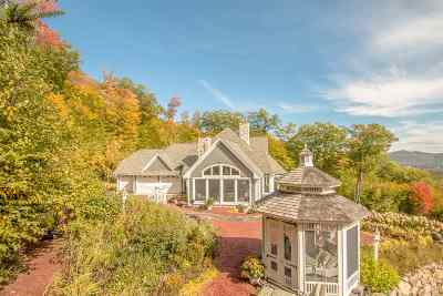 Carroll County Single Family Home For Sale: 85 Overlook Drive