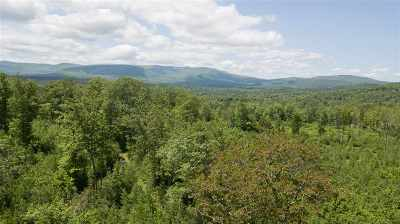 Merrimack County Residential Lots & Land For Sale: 2066 Route 114 Highway