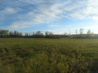 Williston Residential Lots & Land For Sale: Off South Road #Lot 5