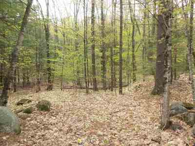 Sanbornton Residential Lots & Land For Sale: 728 Stage Road