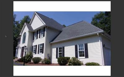 Windham Single Family Home For Sale: 1 Mitchell Pond Road