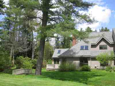 Merrimack County Condo/Townhouse For Sale: 37 The Seasons