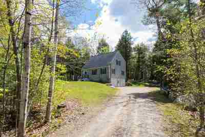 Northwood Single Family Home For Sale: 206 Long Pond Road