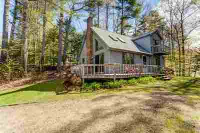 Moultonborough Single Family Home For Sale: 133 Suissevale Avenue