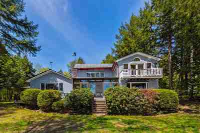 Bedford, Goffstown, Manchester, Nashua, Canterbury, Concord, Danbury, Hooksett, New London, Northfield Single Family Home For Sale: 29 Woody Point Road