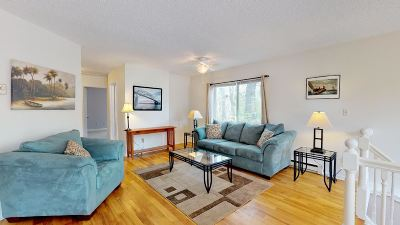 Essex Condo/Townhouse For Sale: 209 Pearl Street #9