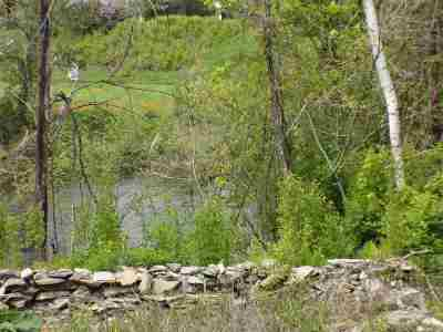 Lisbon Residential Lots & Land For Sale: 54 S Main Street