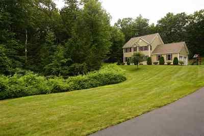 Kingston Single Family Home For Sale: 19 Williams Path Path