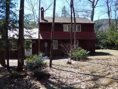 Rumney Single Family Home For Sale: 140 Birchview Lane