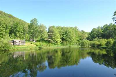 West Rutland Single Family Home For Sale: 4251 Vt 133 Route