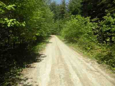 Carroll Residential Lots & Land For Sale: Pine Tree Lane