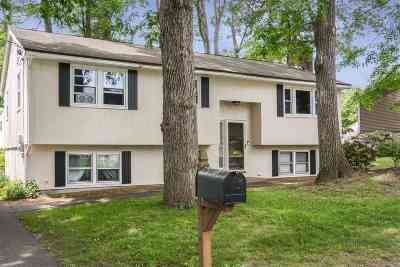 Nashua Single Family Home For Sale: 4 Coventry Road