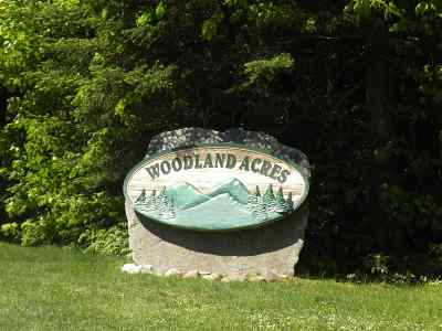 Carroll Residential Lots & Land For Sale: 93 Woodland Acres Road