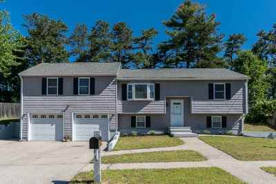 Nashua Single Family Home For Sale: 18 Hassel Brook Road