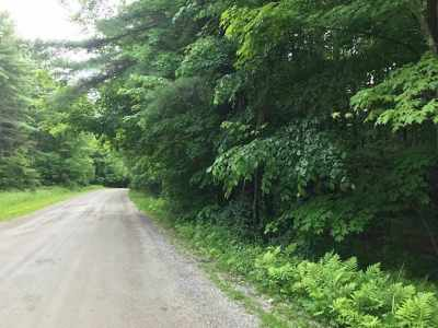 Essex Residential Lots & Land For Sale: 279 West Sleepy Hollow Road